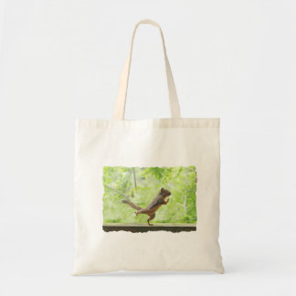 Cute Squirrel Doing Tai Chi Tote Bag