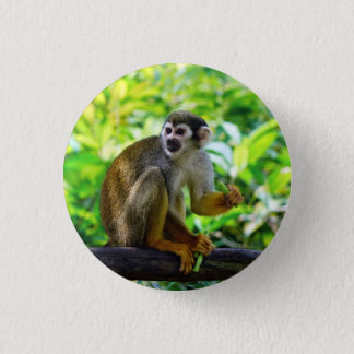 Cute squirrel monkey 3 cm round badge