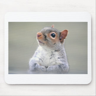 Cute Squirrel Mouse Mat
