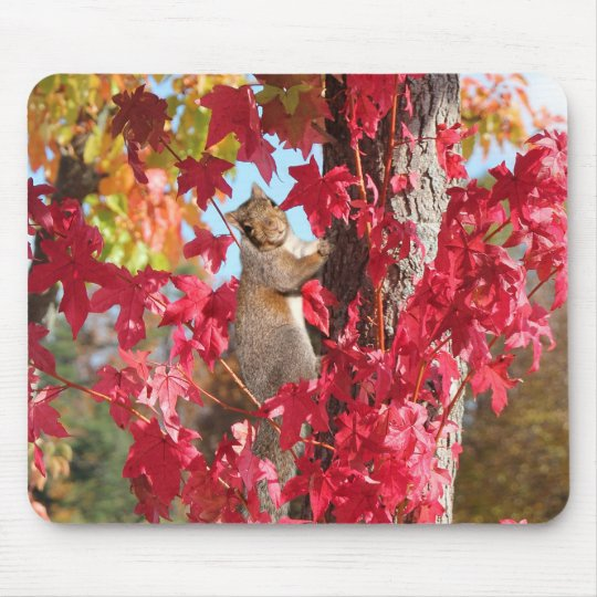Cute Squirrel Mouse Pad