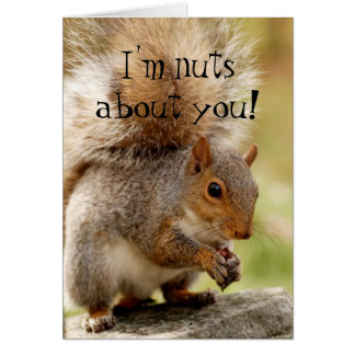 """Cute Squirrel """"Nuts About You"""" Card"""