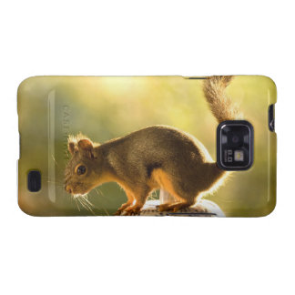 Cute Squirrel on a Cookie Jar Galaxy SII Covers