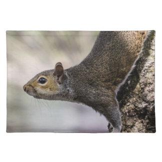 Cute Squirrel Placemat
