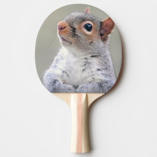 Cute squirrel portrait ping pong paddle