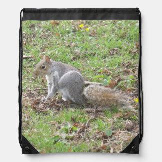 Cute Squirrel Scratching Backpack