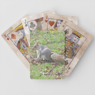 Cute Squirrel Scratching Bicycle Playing Cards