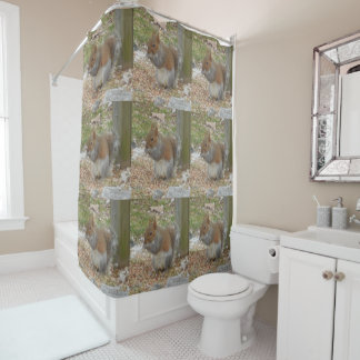 Cute Squirrel Shower Curtain