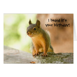 Cute Squirrel Smiling Greeting Card