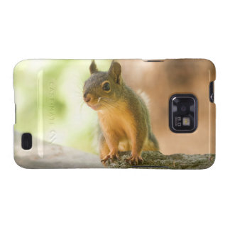 Cute Squirrel Smiling Galaxy S2 Covers