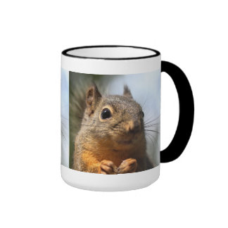 Cute Squirrel Smiling Closeup Photo Mug