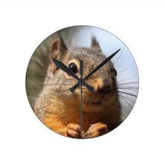 Cute Squirrel Smiling Closeup Photo Round Clock