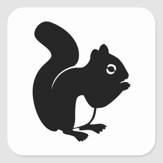 Cute Squirrel Square Sticker