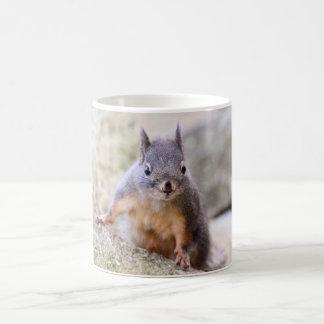 Cute Squirrel Staring Basic White Mug