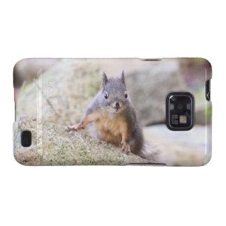 Cute Squirrel Staring Samsung Galaxy Cases