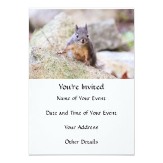 Cute Squirrel Staring 13 Cm X 18 Cm Invitation Card