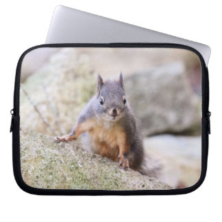 Cute Squirrel Staring Laptop Computer Sleeve