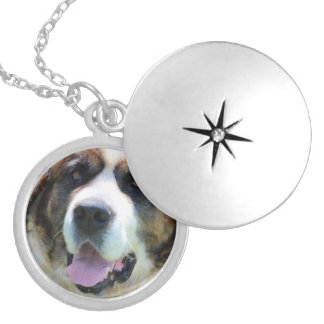 Cute St. Bernard Round Locket Necklace