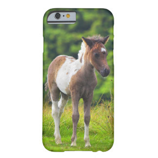 Cute Standing Dartmoor Pony Foal Barely There iPhone 6 Case