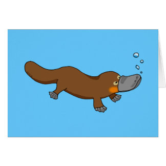 Cute swimming duck-billed platypus card