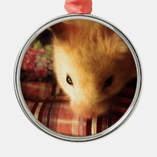 Cute Syrian Hamster Christmas Ornament