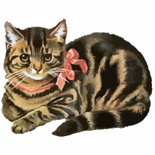 Cute Tabby Calico Cat / Kitten Photo Sculpture