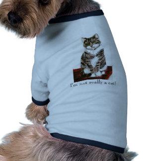 Cute Tabby Cat art Pet Clothes