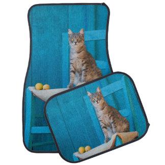 Cute Tabby Cat Kitten on a Blue Chair - floor-mats Car Mat