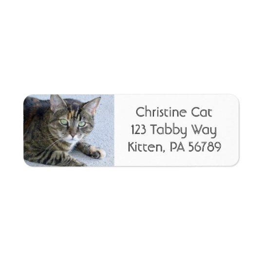 Cute Tabby Cat Photo Return Address Label