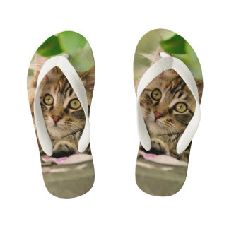 Cute Tabby Maine Coon Cat Kitten Fluffy Photo Kids Flip Flops