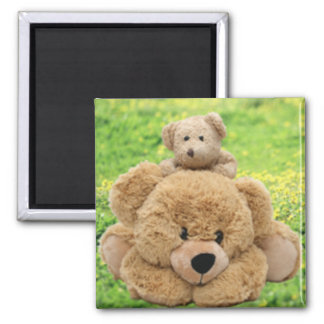 Cute Teddy Bears In A Meadow Square Magnet