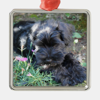 Cute Terrier Dog Silver-Colored Square Decoration