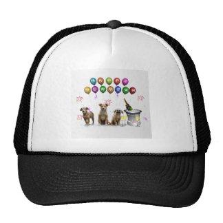 Cute Three Dogs Wishing Happy New Year 2016 Cap