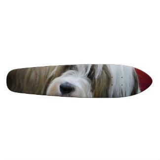 Cute Tibetan Terrier Dog Skateboards