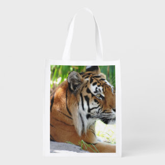 Cute Tiger Reusable Grocery Bag