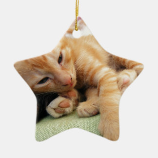 Cute Tiger Stripe Kitten Ceramic Star Decoration