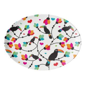 cute toucan bird tropical illustration porcelain serving platter
