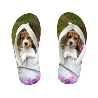 Cute Tricolor Beagle Dog Puppy Animal - for Kids Flip Flops