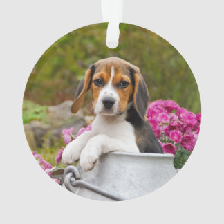 Cute Tricolor Beagle Dog Puppy in a Milk Churn '' Ornament