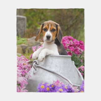 Cute Tricolor Beagle Dog Puppy in Milk Churn comfy Fleece Blanket