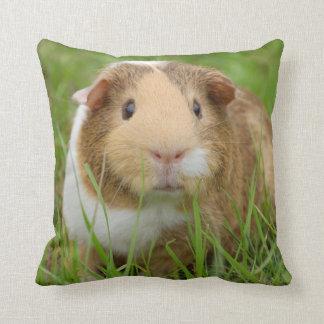 Cute Tricolor Guinea Pig in Green Grass Cushion