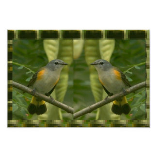 Cute Twin Birds for KIDS Room Art Decorations FUN Poster