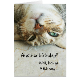 Cute Upside Down Cat Birthday Card