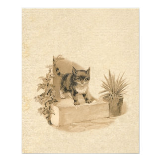 Cute Vintage Cat Drawing Antique French Card 11.5 Cm X 14 Cm Flyer