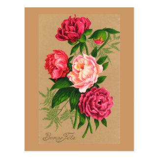 Cute Vintage Floral Pink Roses Postcard