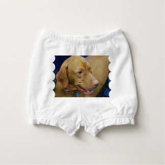 Cute Vizsla Dog Nappy Cover