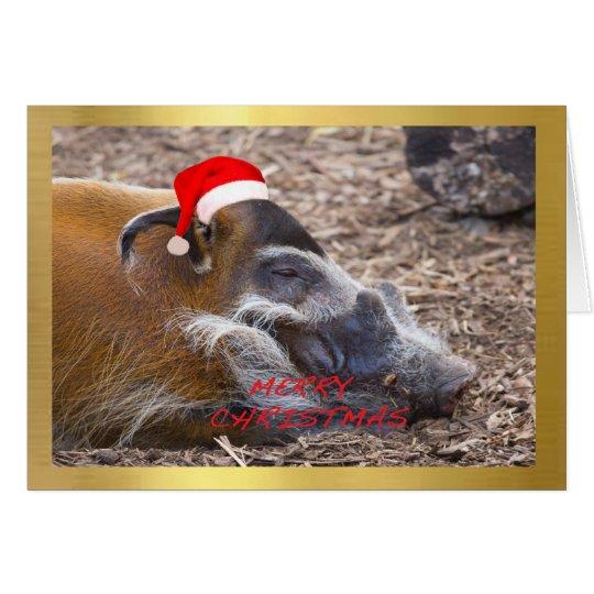 """Cute Warthog"" design Christmas card"