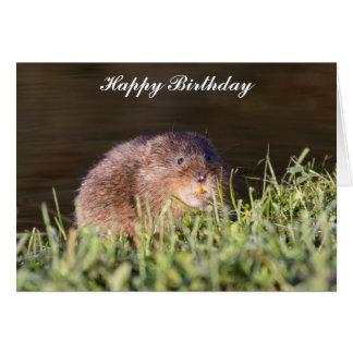 Cute Water vole Birthday Card