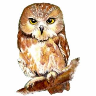 Cute Watercolor Saw Whet Owl, Bird, Animal Photo Sculptures
