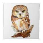 Cute Watercolor Saw Whet Owl, Bird, Animal Small Square Tile