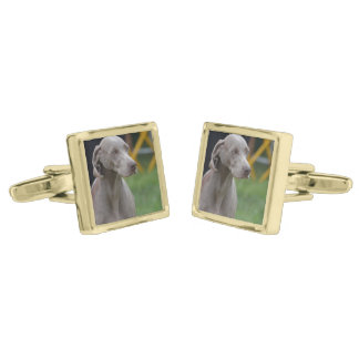 Cute Weimaraner Dog Gold Finish Cuff Links